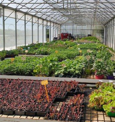Notre Vocation : revaloriser le monde de la culture agricole