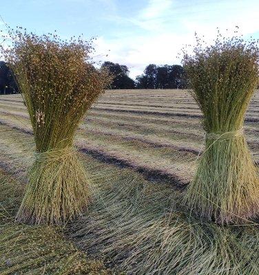 De la tradition à la transition de l'agriculture